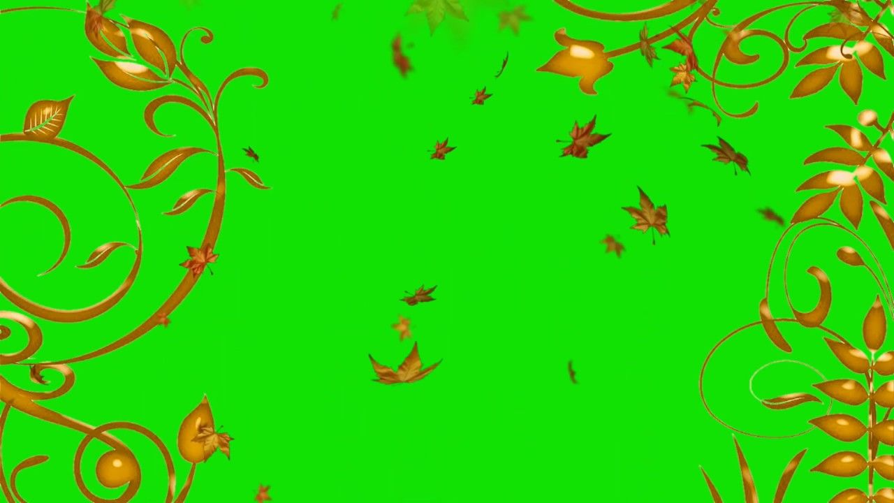 Falling Leaves After Effects Green Screen Effect Video Star Video Effect Green Screen Video Backgrounds Greenscreen Video Effects