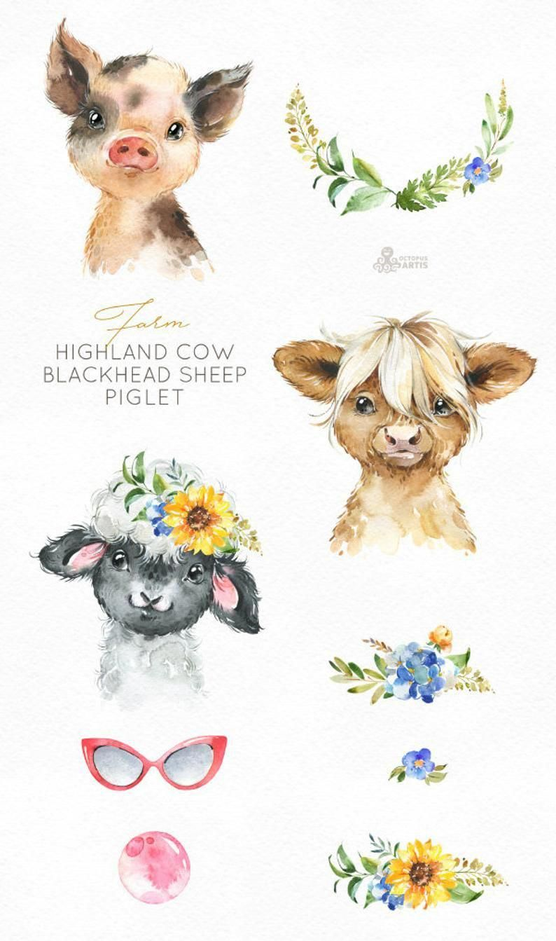Naturalcureforcough Animal Clipart Highland Cow Animals