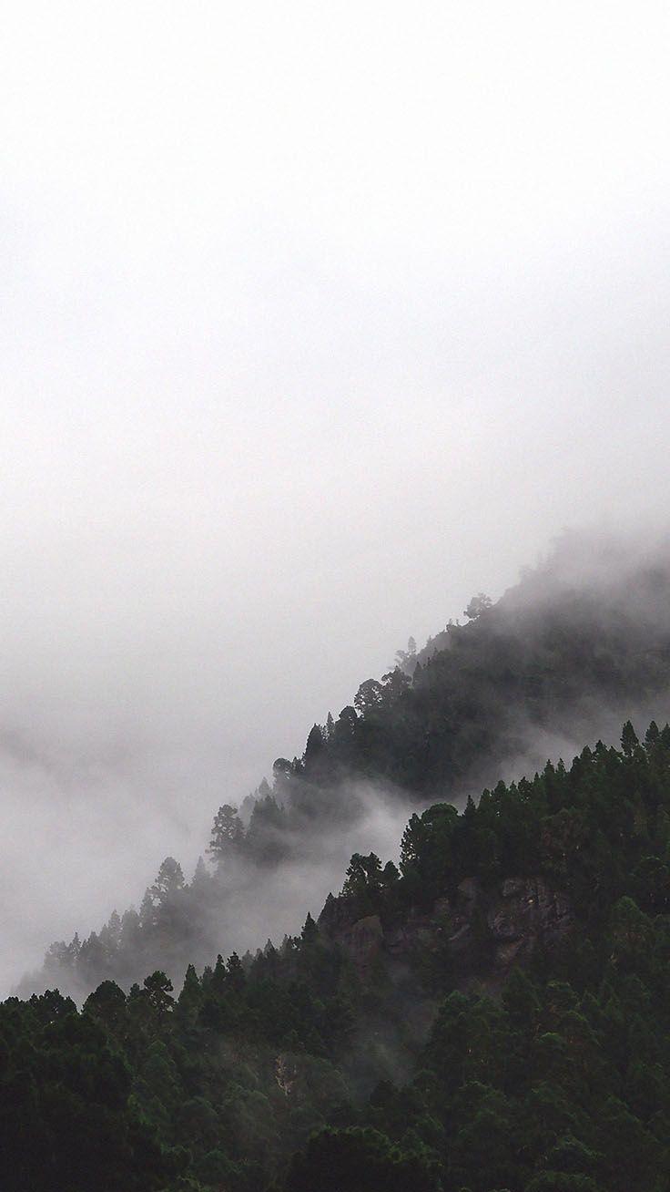 Holen Sie Sich Den Wald Mit 9 Kostenlosen Iphone X Hintergrunden Mit Bildern Wald Tapete Hintergrund Iphone Natur Wallpaper