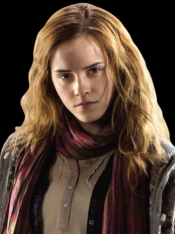 Hermione Granger Hermione Granger Harry Potter Hermione
