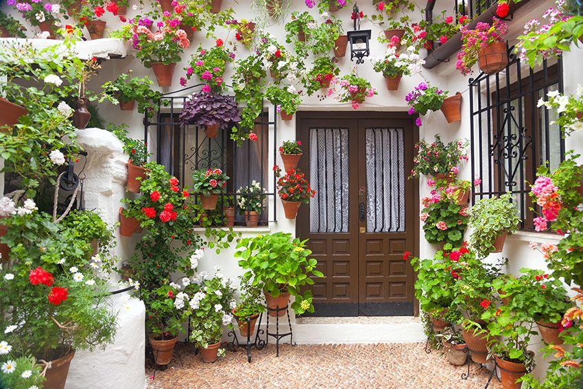 Kwietniki Metalowe Stojaki Na Kwiaty Blog Mediterranean Garden Hanging Flower Pots Bulb Flowers