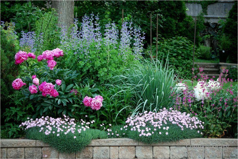 Flower bed ideas for full sun good 53 flower garden