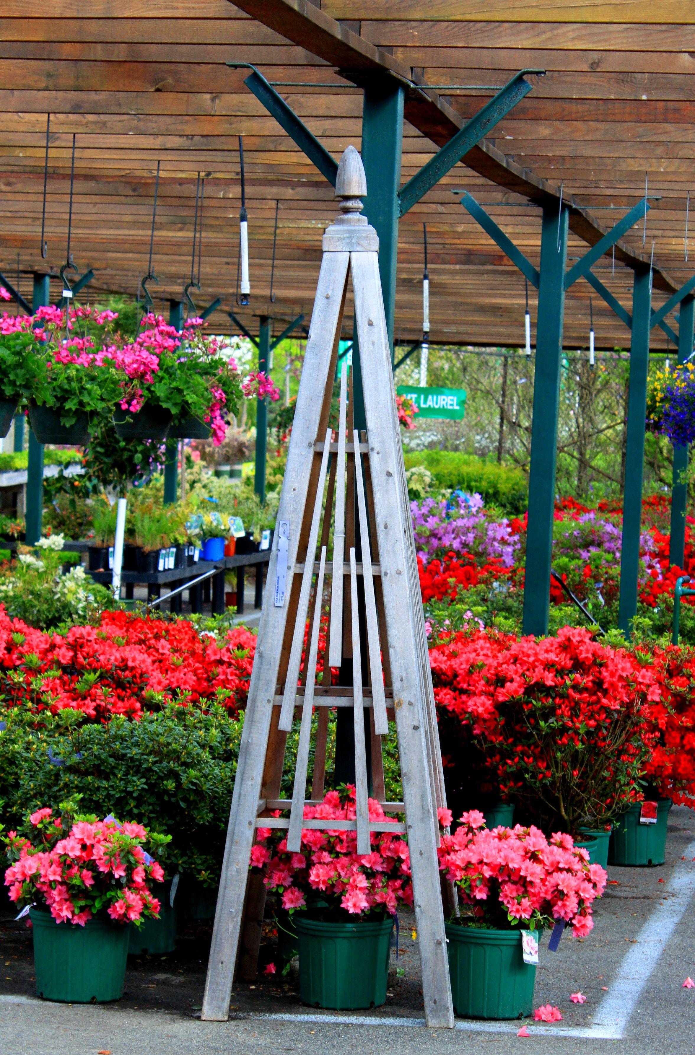 love wood or metal obelisks in the garden Garden