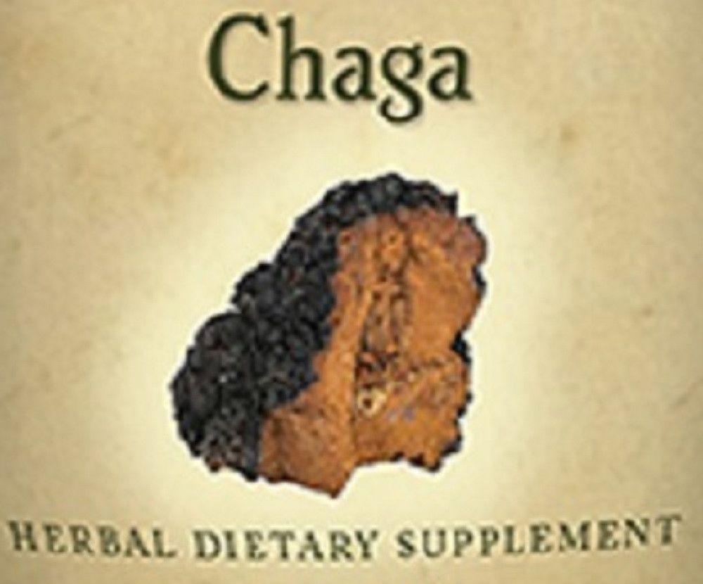 16+ CHAGA MUSHROOM   Single Herb Immune System Support