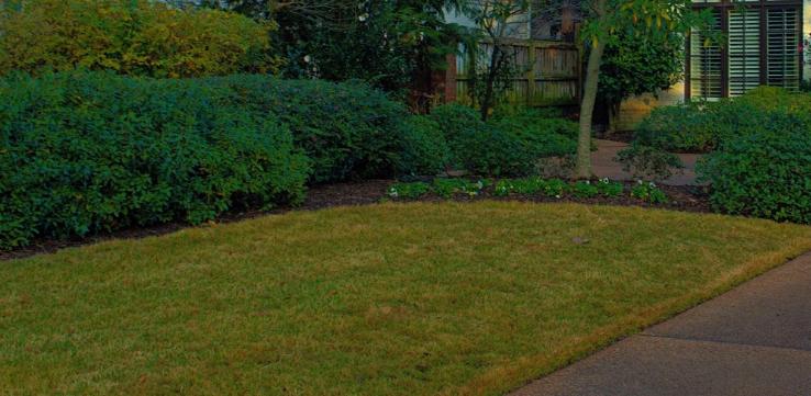 Grounds Maintenance Coates Tn Landscape Maintenance Commercial