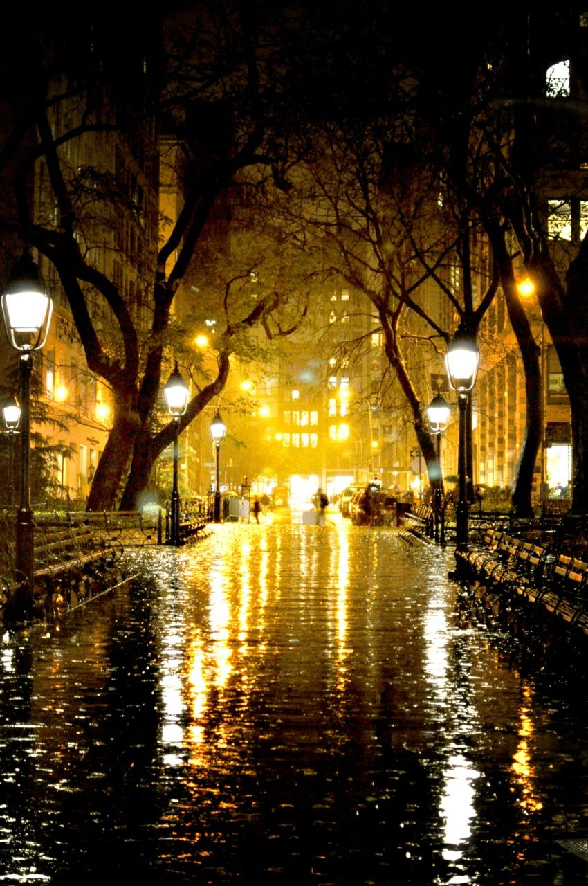 Everything is illuminated Rain photography, City rain