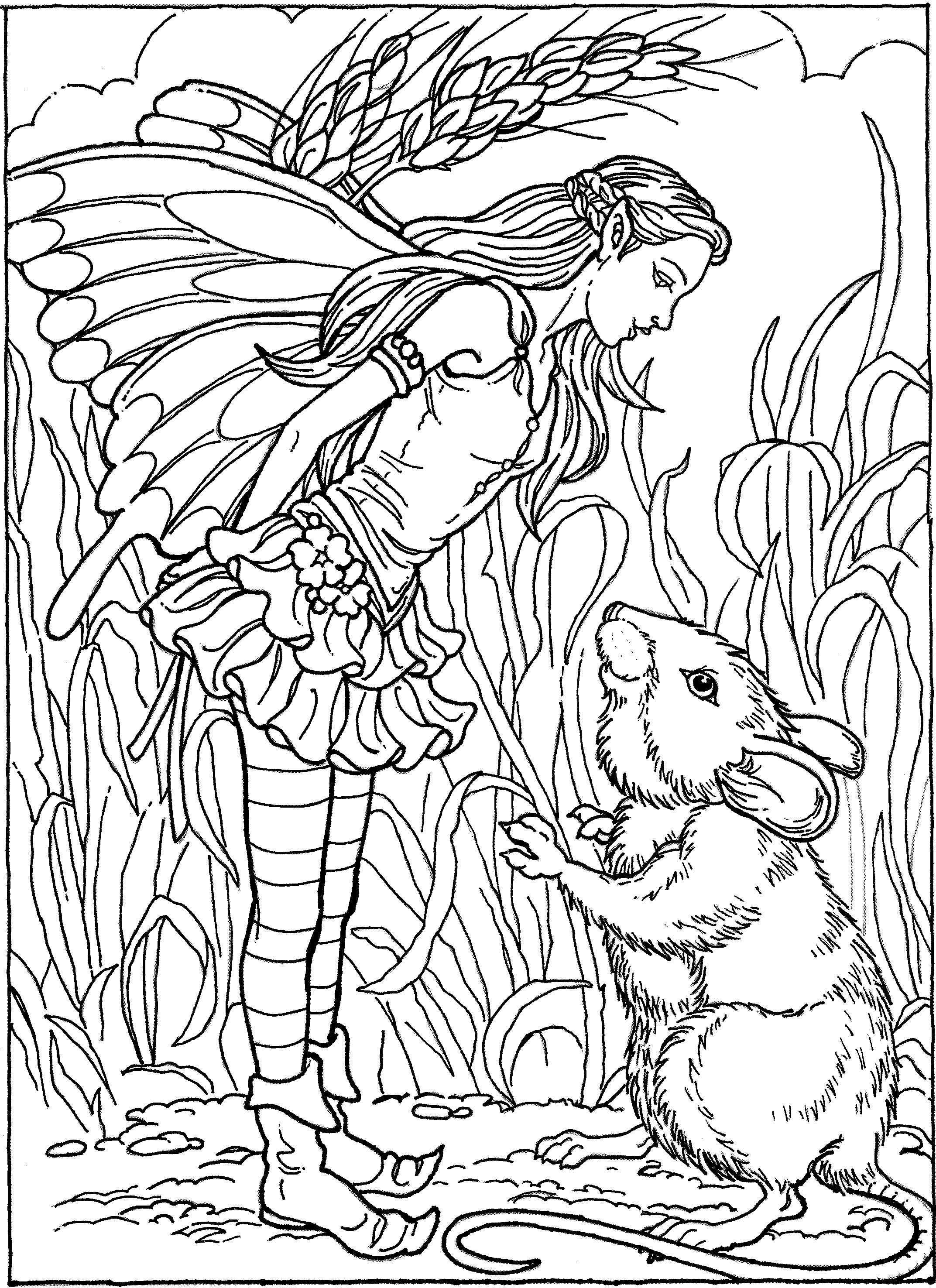 Fairy And Mouse Coloring Page Fairy Coloring Pages Coloring Book Art Fairy Coloring