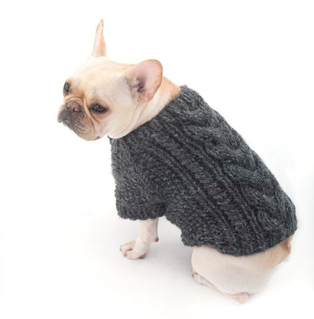 Top 5 Free Dog Sweater Knitting Patterns | Sewing | Pinterest | Ropa ...