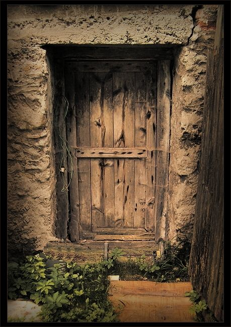 whatu0027s behind the magic door & A door done this way with polished knots and burrs would be a ... pezcame.com