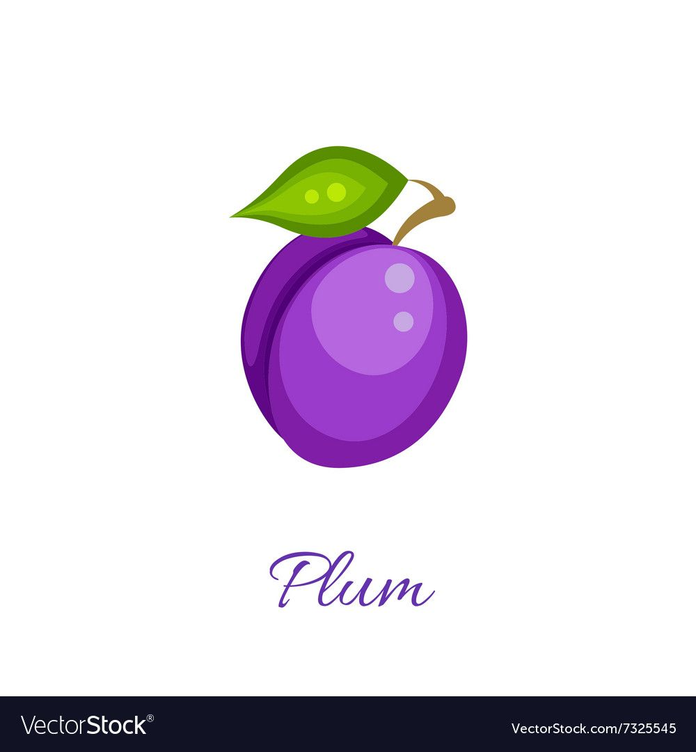 Purple Plum Icon Vector Image On Vectorstock Vector Free Vector Images Icon