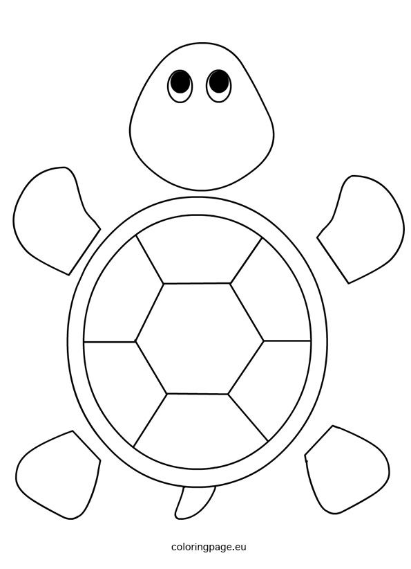turtle template for preschool daycare learning turtle crafts