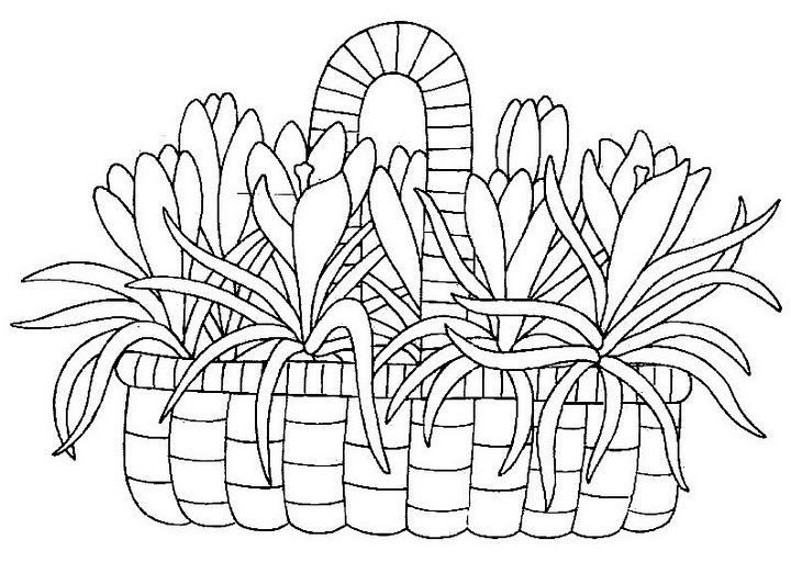 Canasta De Flores Y Frutas Para Pintar Embroidery Patterns Coloring Pages Easter Coloring Pages