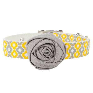 Top Paw Bella Graphic Dog Collar Collars Petsmart Dog Collar Petsmart Dog Accessories