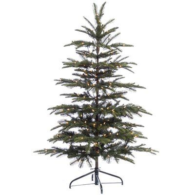 d897f332ba5 The Holiday Aisle Pre-lit Aspen 4.5  Green Fir Artificial Christmas Tree  with 250 Clear Lights with Stand