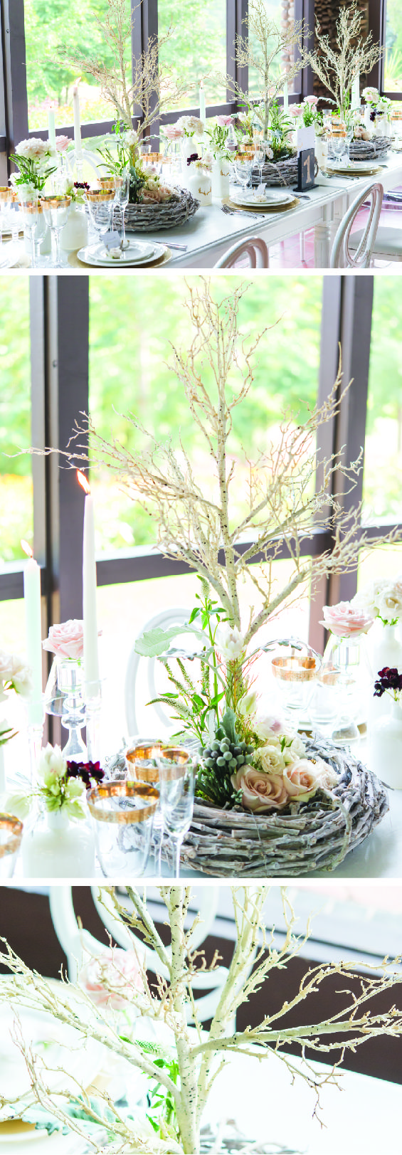 Pin by The Knot Shop on Camp Weddings Tree centrepiece