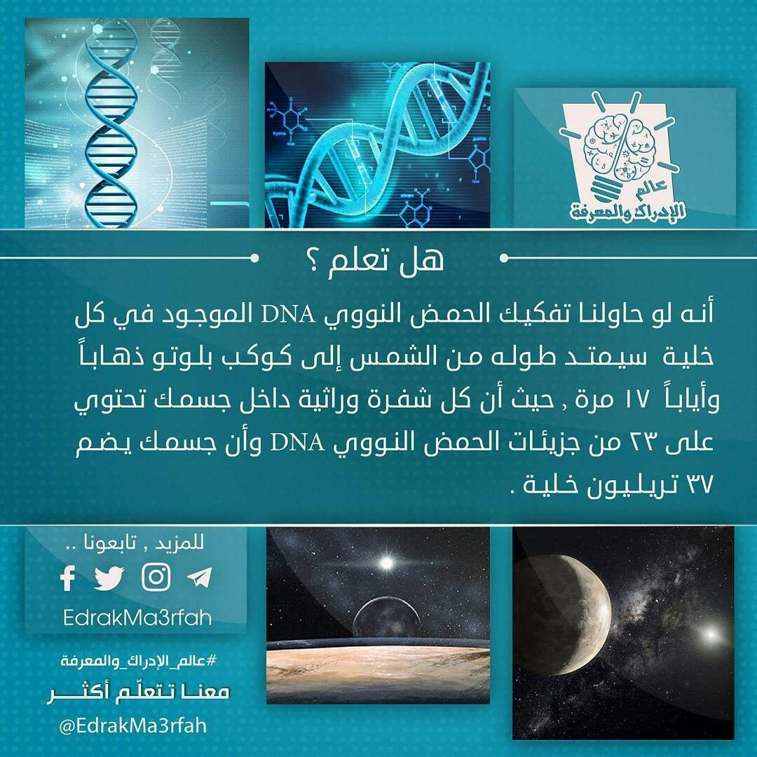 Pin By Sara A Issa On هل تعلم Good To Know Knowledge Jail