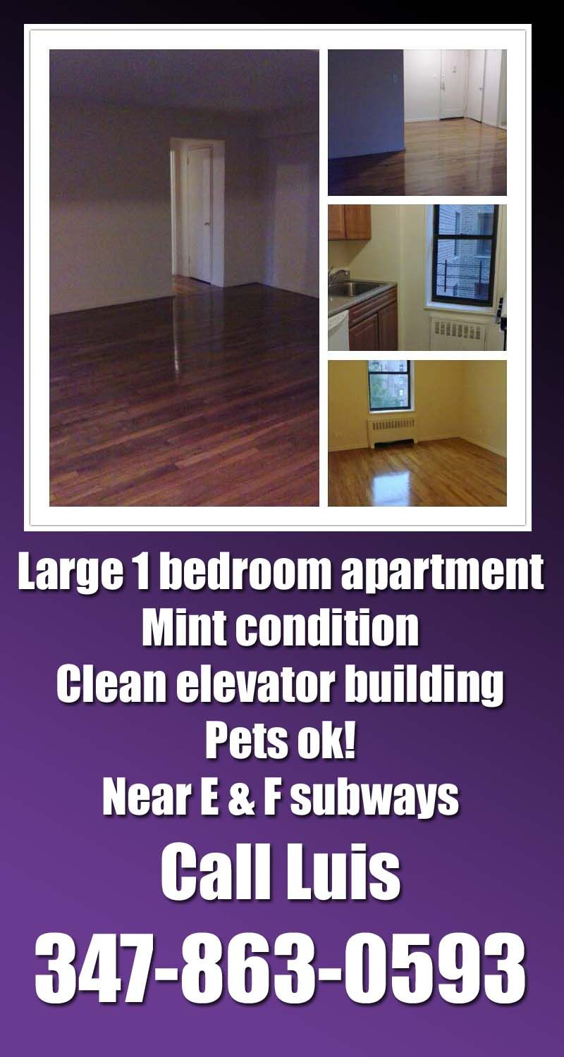 1299 large and renovated 1 bedroom apartment in briarwood - One bedroom apartments in queens ...