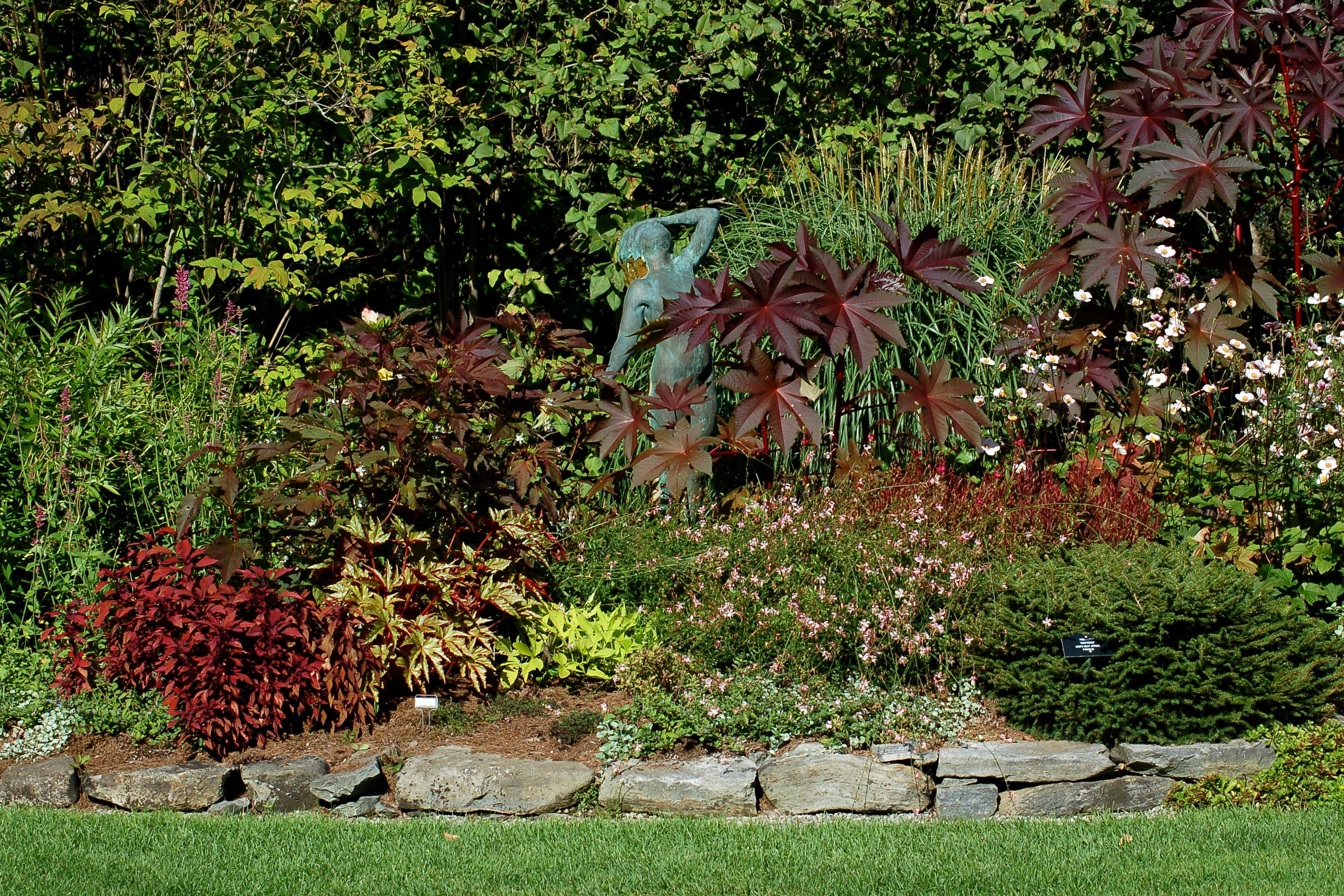 landscape shrub screens | Picture of a mixed border of shrubs, perennials, annuals and tropical ...