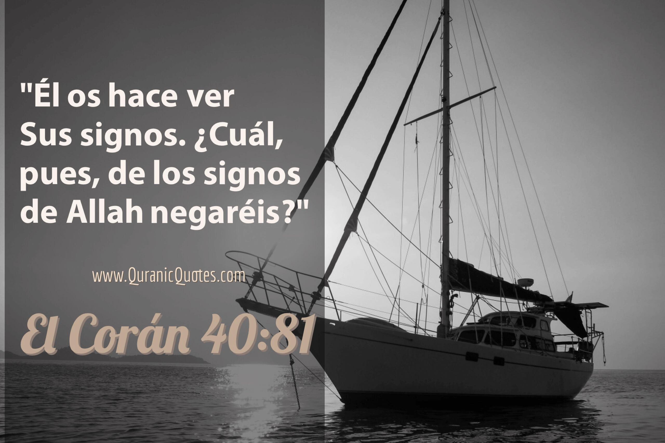 44 El Corán 40:81 (Surah Ghafir) And He shows you His Signs