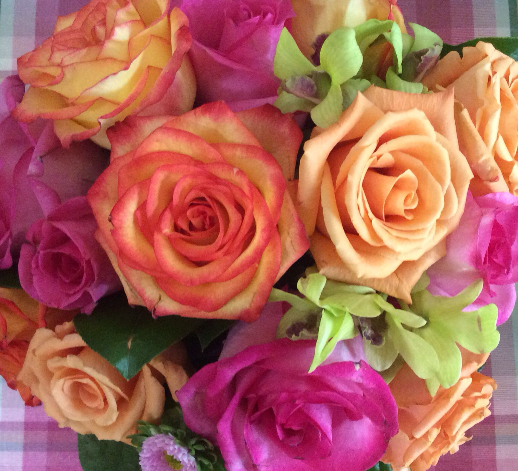 With this 'Spring Bouquet' Spring can't come soon enough.  Fuchsia Roses, Pale Orange Roses, Pale Orange w/Dark Orange Tipped Petals all accented with Kiwi Green Orchids.