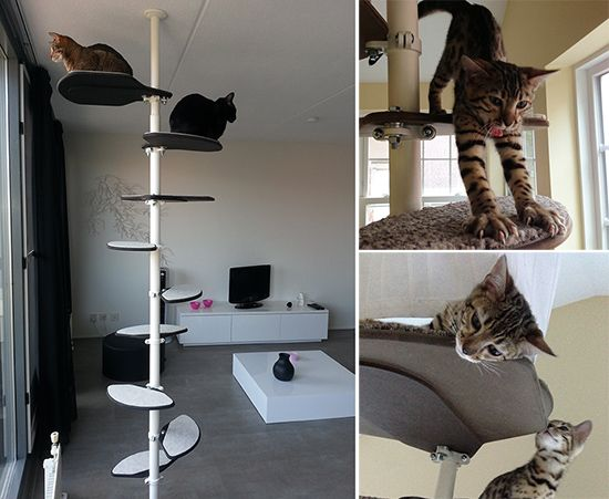 elegant modern cat climbing tower from hollywood franklin cat cat tree and cat furniture. Black Bedroom Furniture Sets. Home Design Ideas