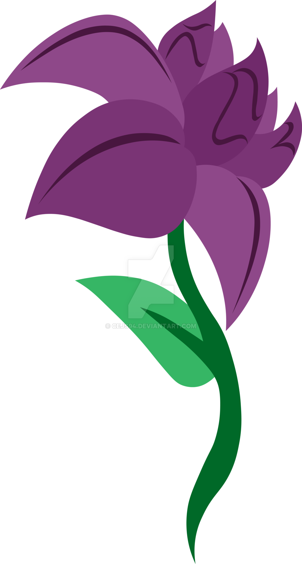 Пони цветов картинки