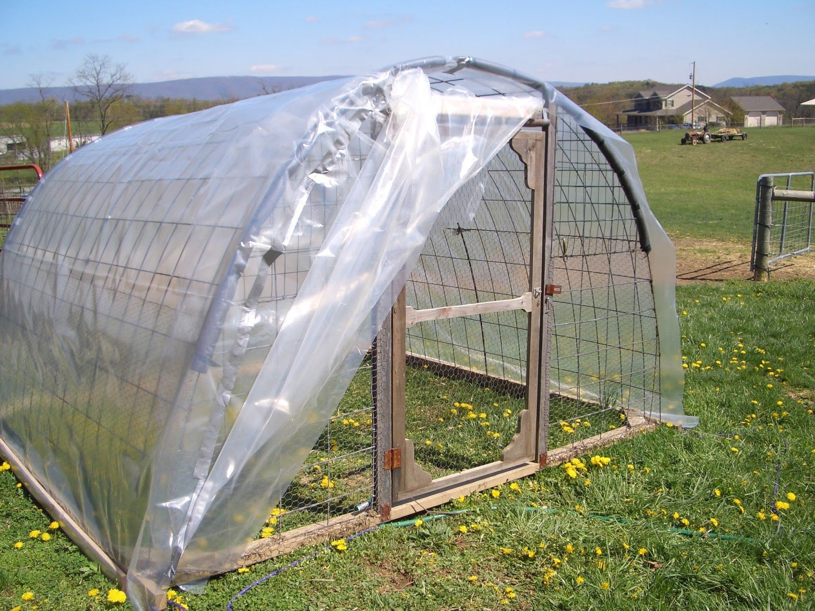 Enticing Cattle Panel Greenhouse Plans What All Can A Hoop Coop Cattle Panel Greenhouse Plans What All Can A Hoop Coop House Cattle Panel Greenhouse Forum Cattle Panel Greenhouse Height