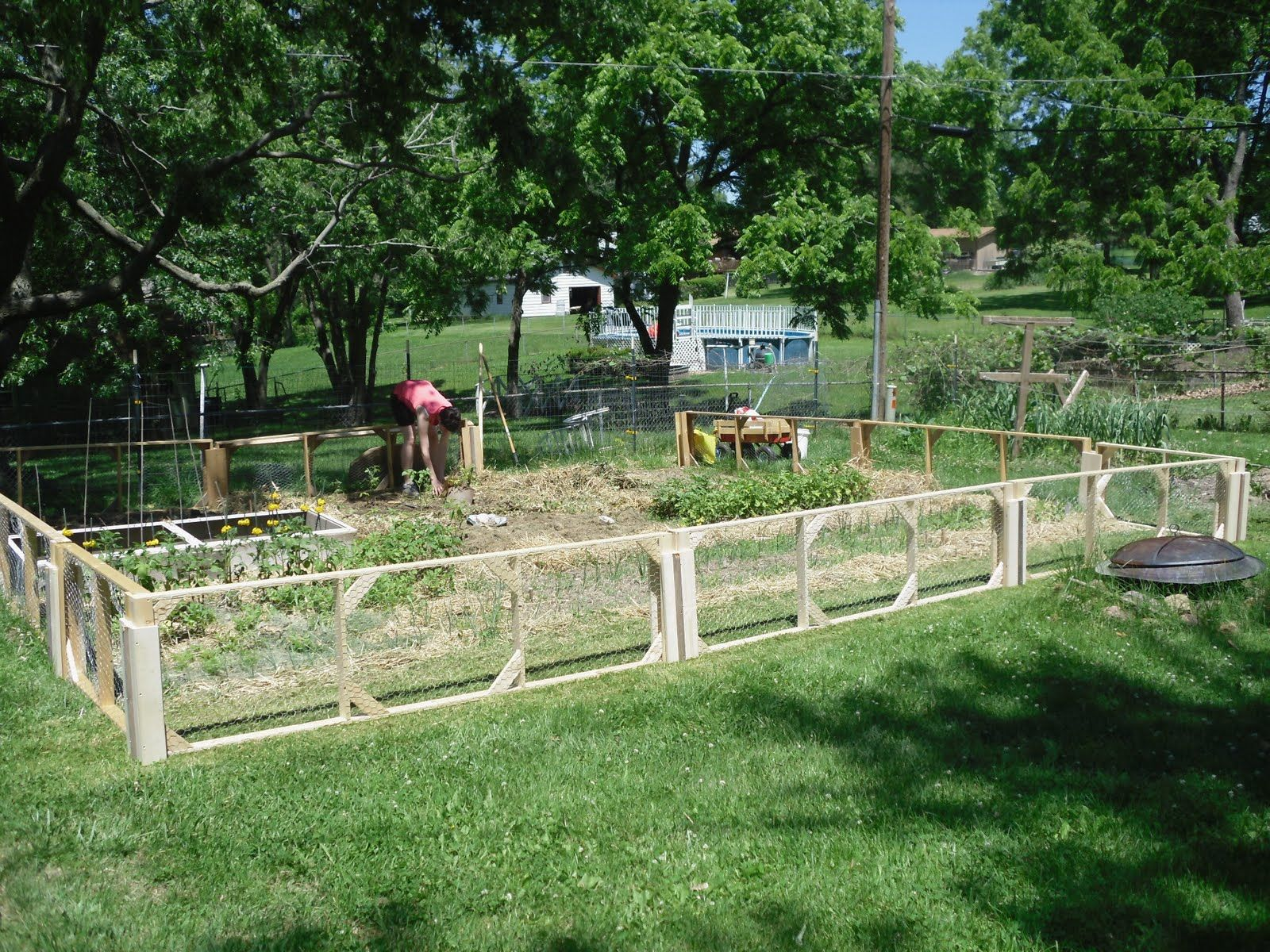 Vegetable garden deer fence ideas - 10 Garden Fence Ideas That Truly Creative Inspiring And Low Cost