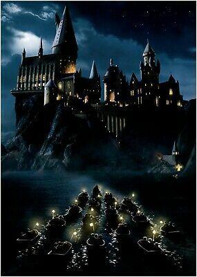 Details about Harry Potter Hogwarts Castle Movie Poster Art Print Maxi A1 A2 A3 A4