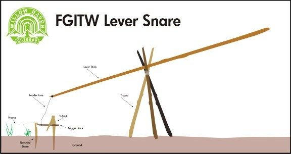 Lever Snare Wide How To Set Up A Snare Survival Skills Survival Blog Outdoor Survival