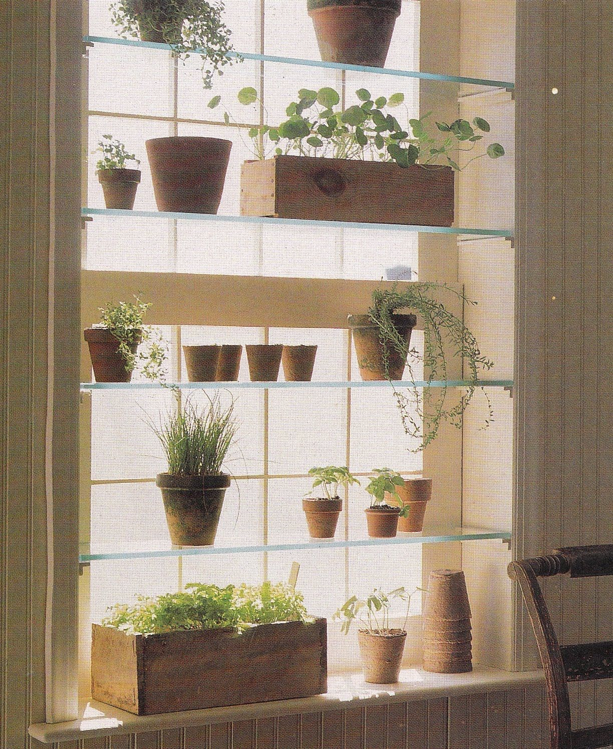 kitchen window herb garden love this home garden
