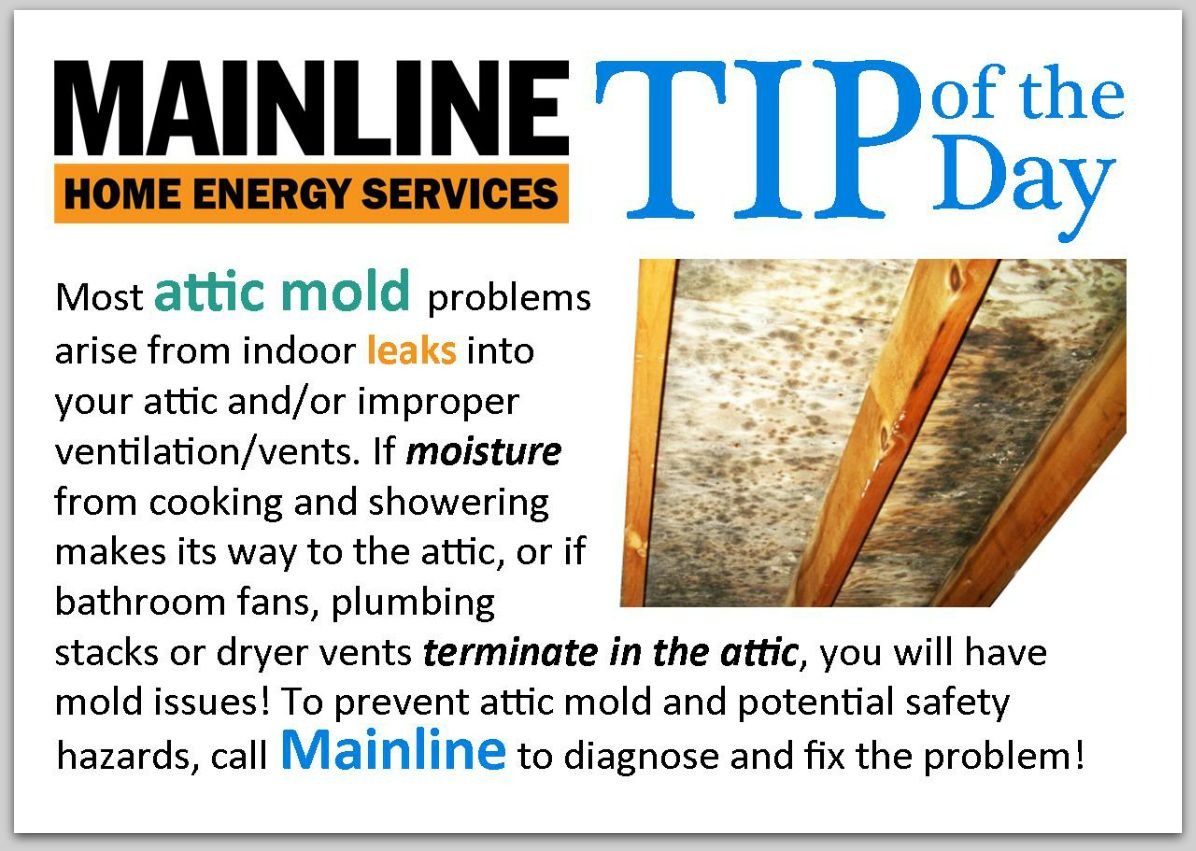 Mainline Ventilation Vents Ductless Heat Pump What Causes Mold