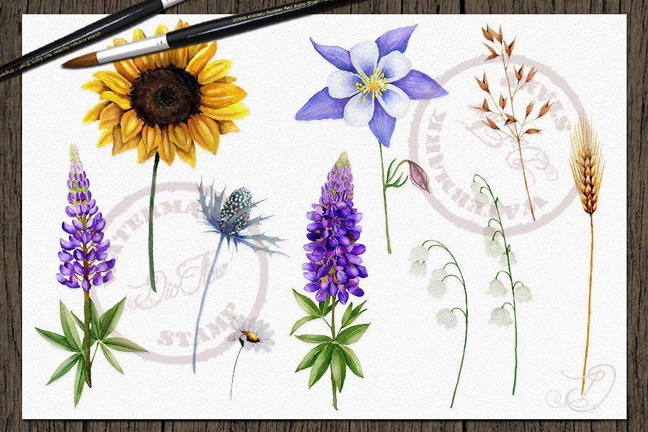 Aster Flower Tattoos In 2020 Aster Flower Tattoos Aster Flower Flower Prints Art
