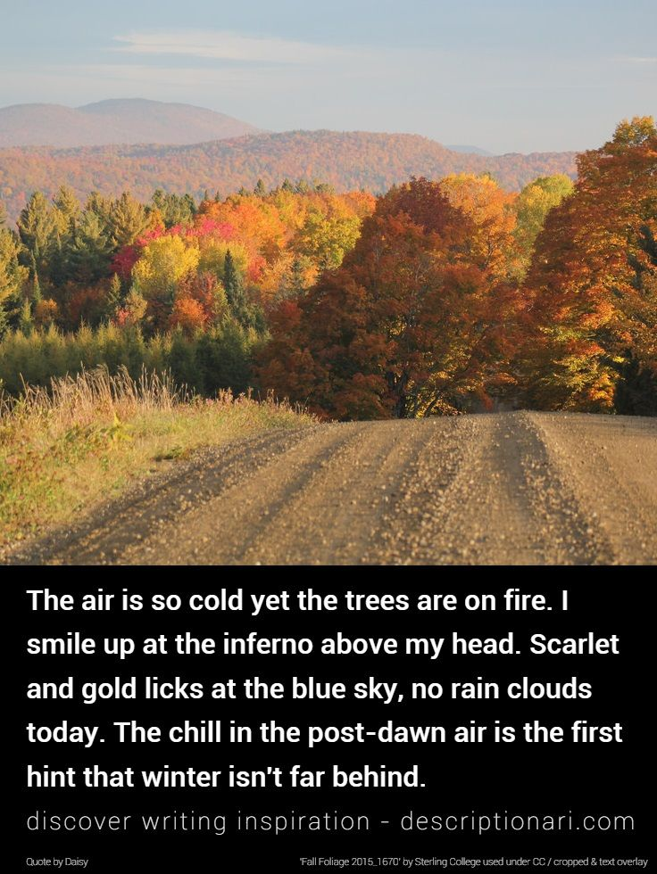 e80d88b869 The Season Of Fall - Quotes And Descriptions To Inspire Creative Writing
