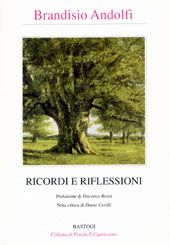 "Collection of italian lyrics ""Ricordi and riflessioni"" - by Brandisio Andolfi"
