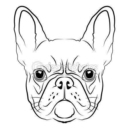 Cabeza de bulldog francés — Vector de stock #81133566