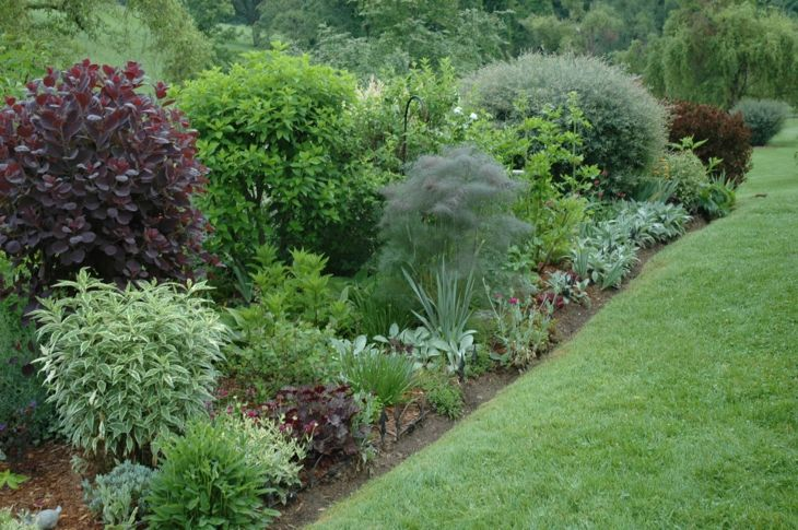jardines arbustos con separdores verdes para el cesped Jardín