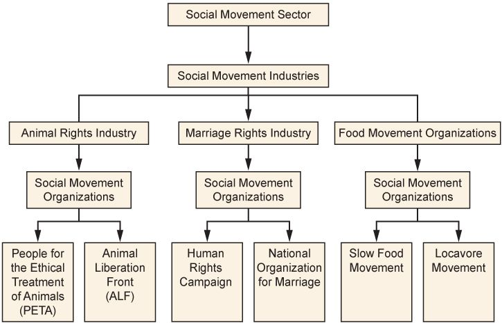 A flow chart summarizing the social movement sector. With