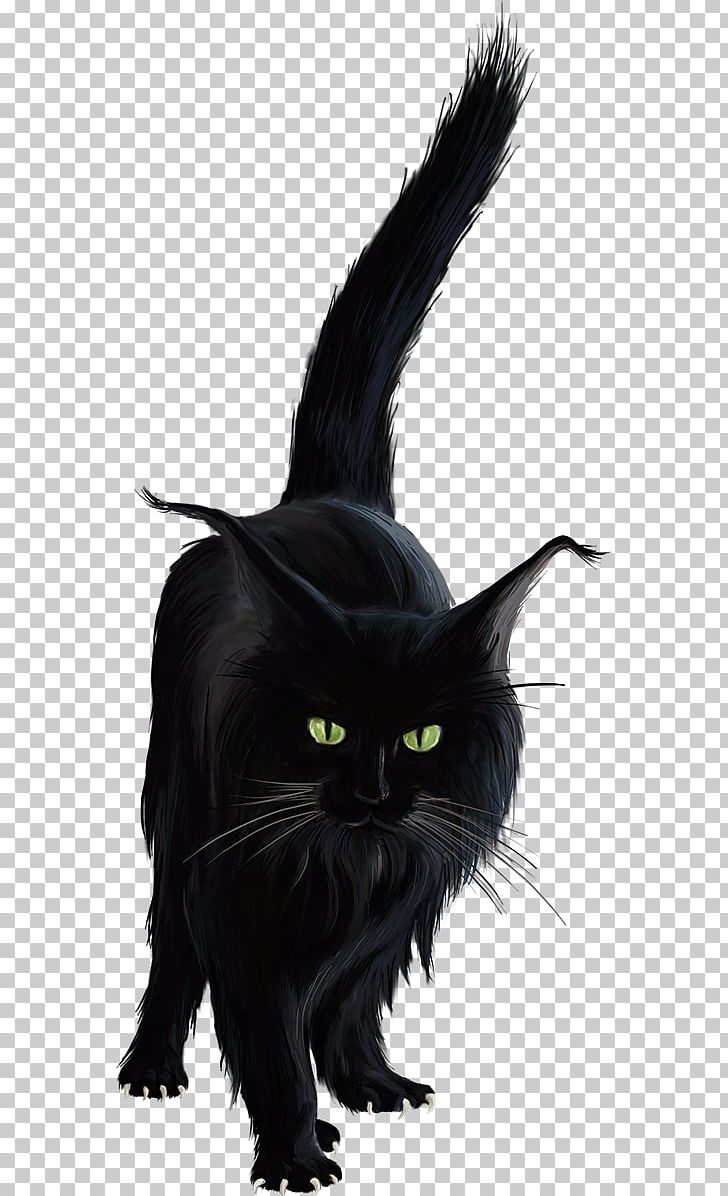 Bombay Cat Black Cat Norwegian Forest Cat Kitten Png Clipart Anim Animal Animals Black Carnivora Black Cat Anime Black Cat Drawing Black Cat Illustration
