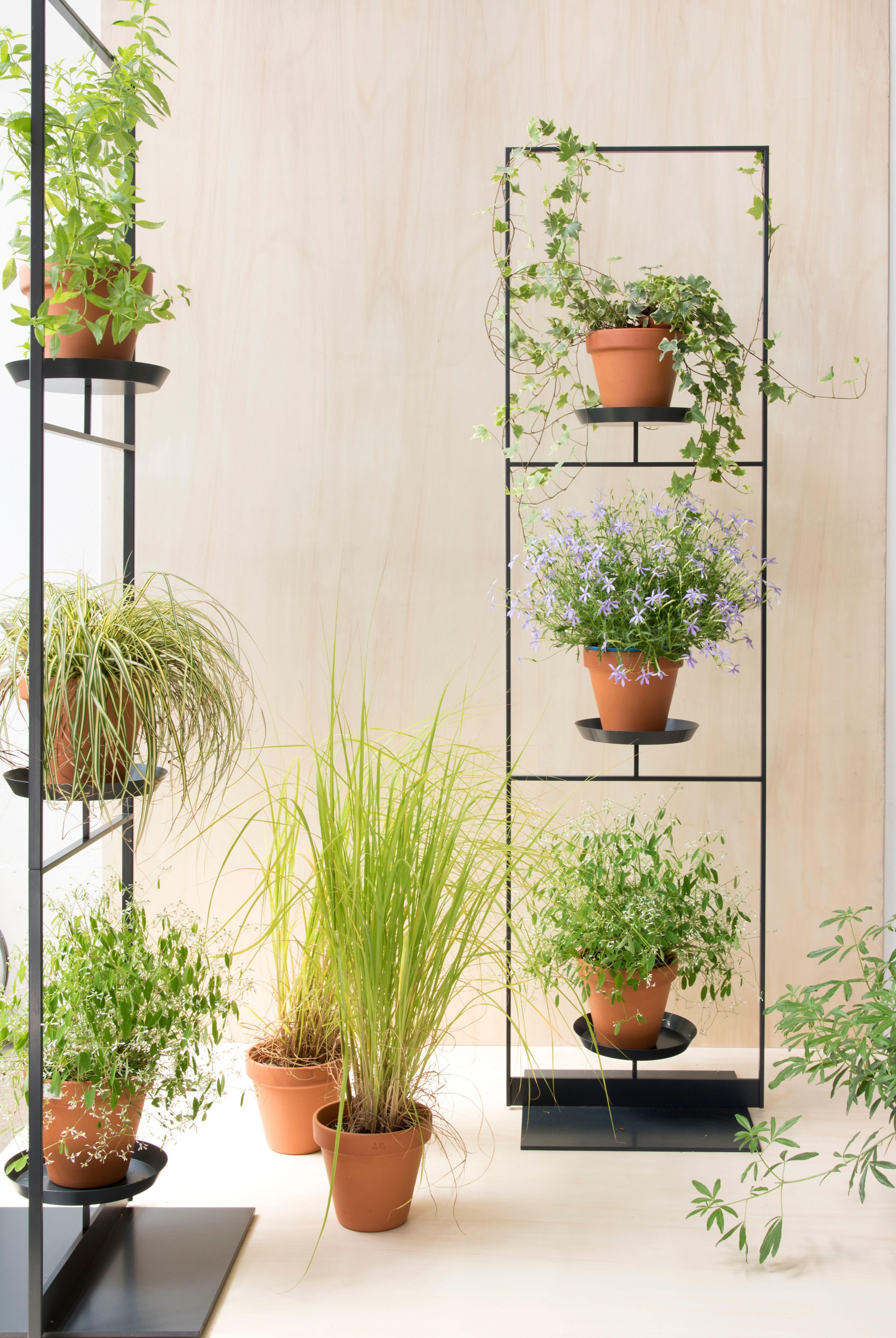 Etagere Pour Plantes Interieures porte plante | porte plantes, supports pour plantes, plante
