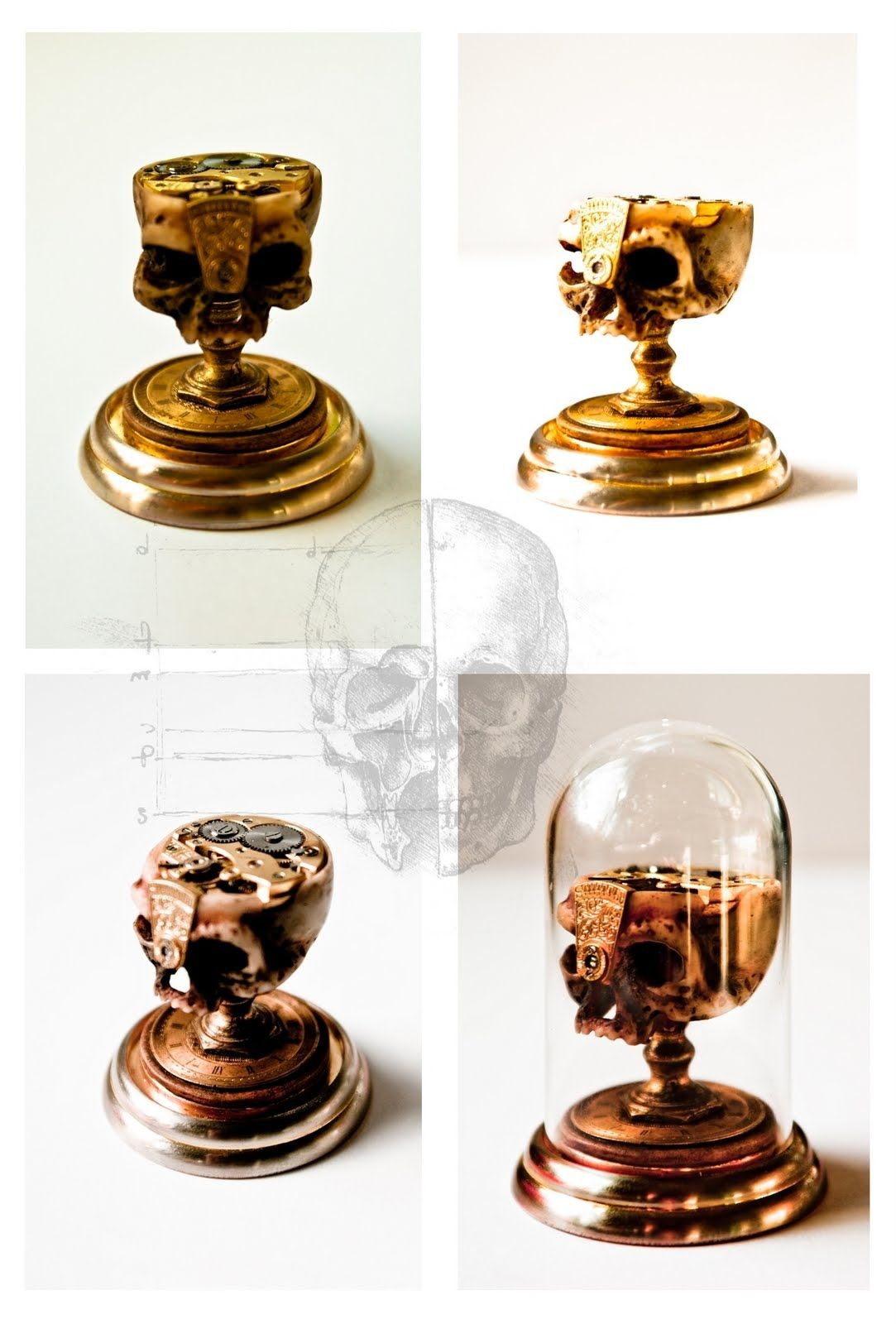 Decorative hand carved bone skull mounted under miniature glass dome.