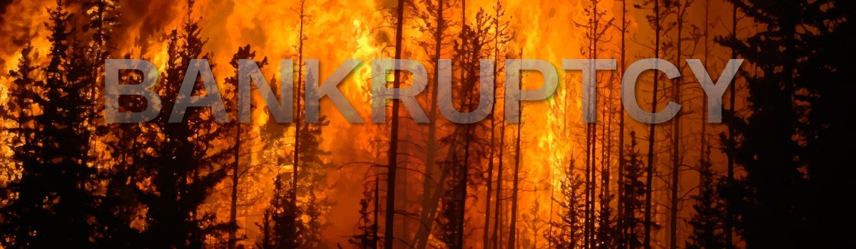 First Insurance Company Declares Bankruptcy In Wake Of Camp Fire With Images Butte County Campfire Bankruptcy