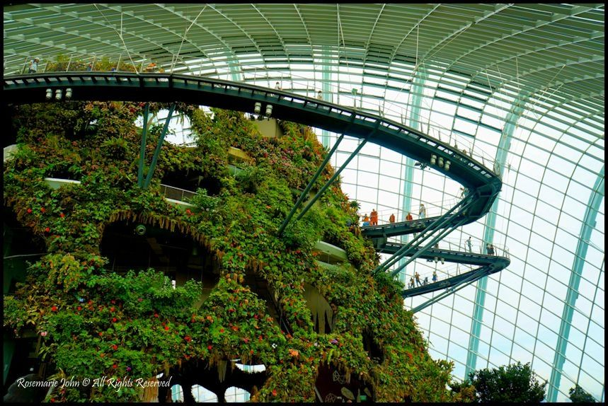 8000a43be94adeaeed590a92f0cf33ac - Gardens By The Bay Visitor Centre