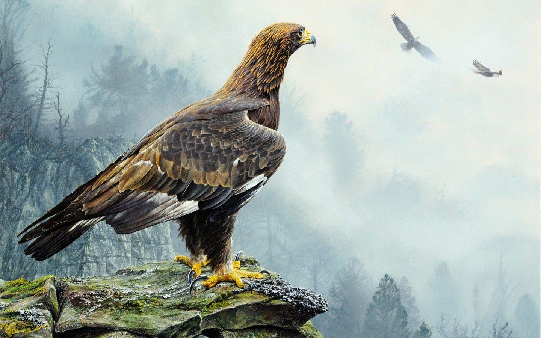 Alan M. Hunt, Golden Eagle, painting, bird, eagle, flying, rocks, trees, fog, nature, landscape