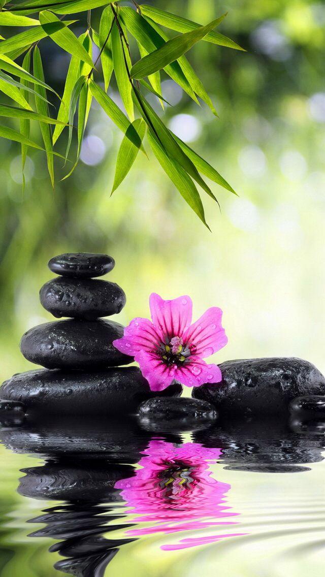 Fond Decran Gratuit Zen
