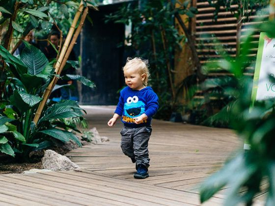 Hoch hinaus! 7 Tipps für das entspannte Wandern mit Baby