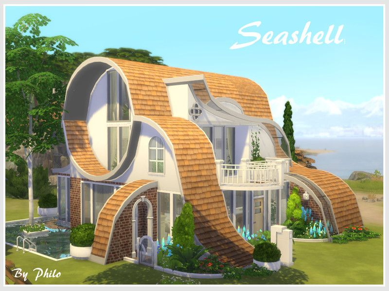 philo s Seashell No CC