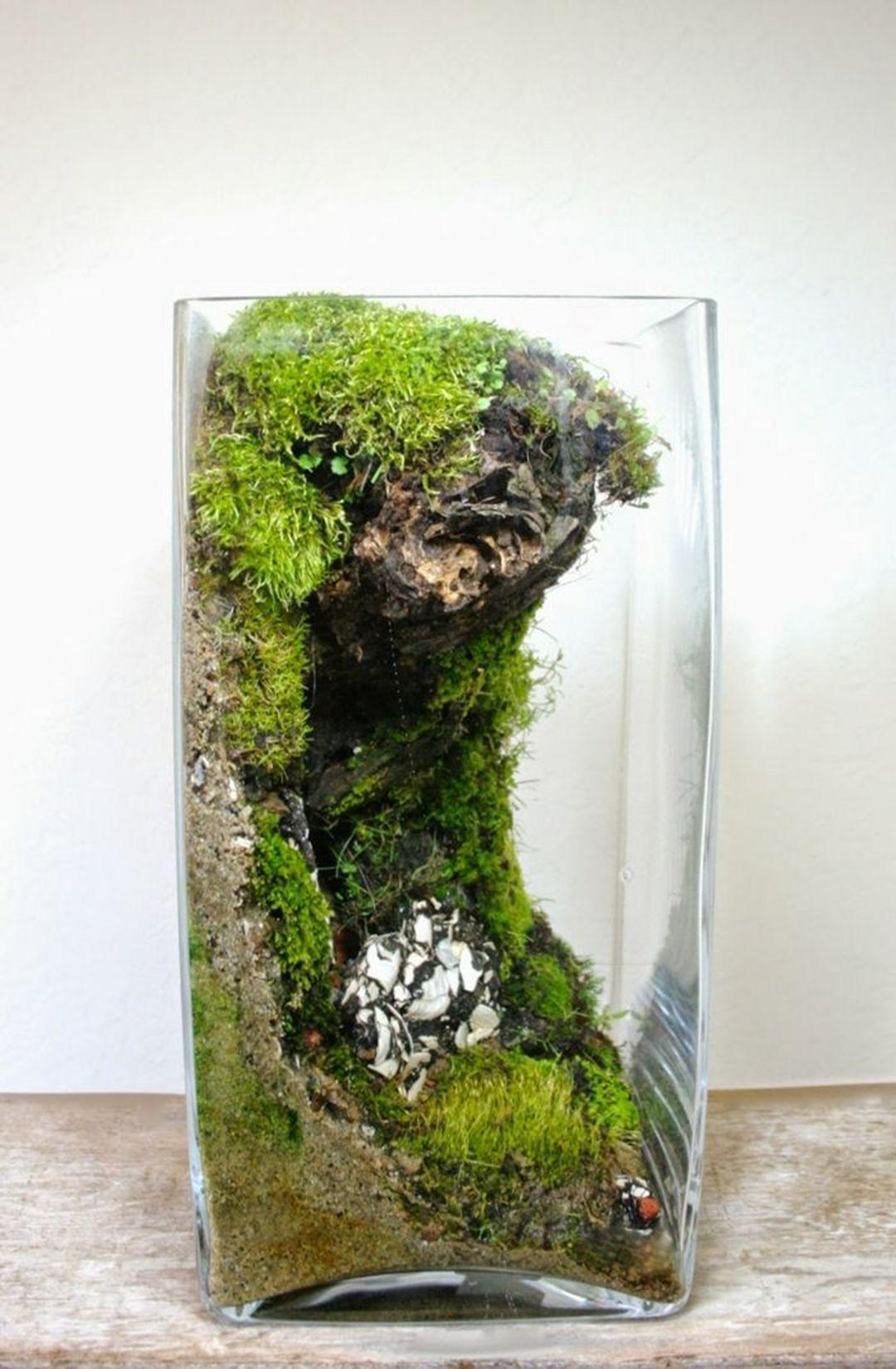 25+ Impressive Indoor Water Garden Ideas For Best Indoor Garden ...