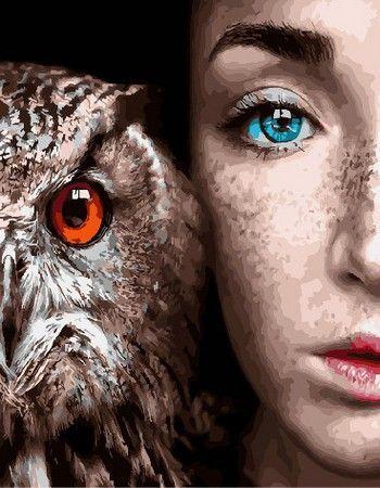 Девушка и сова-картина по номерам в 2020 г | Картины, Сова ...