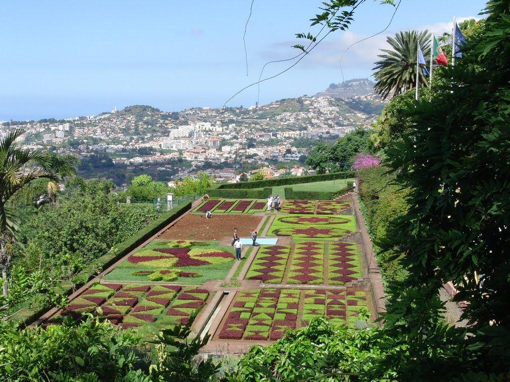 Portugal Madeira Funchal Botanischer Garten Madeira In 2019